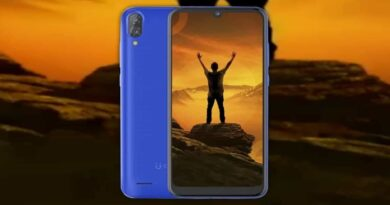 Gionee Max with