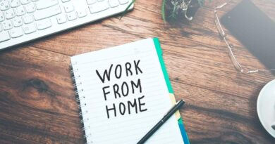 Work from home rules