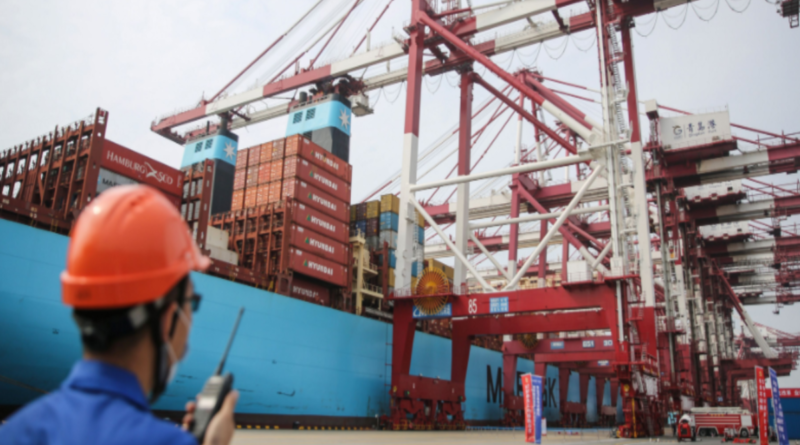 Exports continue steadily